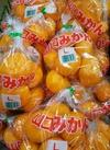 みかん 398円(税抜)