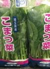 こまつな 98円(税抜)