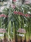 ほうれん草 135円(税抜)