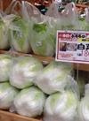 白菜 180円(税抜)