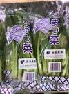 小松菜 79円(税抜)