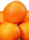 ネーブルオレンジ 98円(税抜)