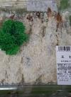 エビフライ 398円(税抜)