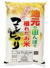 地元の田んぼで獲れたお米コシヒカリ 1,780円(税抜)
