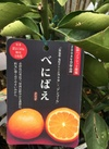 高級果樹苗 PVPハイブリッド柑橘 べにばえ 1,980円(税抜)