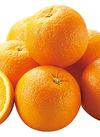 オレンジ 67円(税抜)