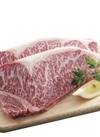 伊予牛絹の味黒毛和牛ステーキ 半額