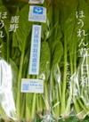 白井さん家のエコほうれん草 158円(税抜)