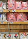 お米(割引、チラシ商品、太陽市商品は対象外) 10%引