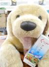 くらし良好 アマニ油 549円(税抜)
