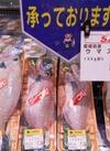 愛媛県産 ウマズラハギ 100g当 108円(税抜)