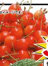 さくらんぼ <佐藤錦> 429円(税込)