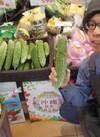 沖縄フェア♪「ゴーヤー」 178円(税抜)