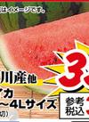 スイカ 3L~4Lサイズ 350円(税抜)