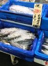 真あじ 150円(税抜)