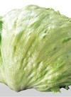 三ツ星野菜のレタス 105円(税込)