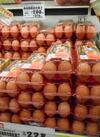 卵(割引、チラシ商品、太陽市商品は対象外) 10%引
