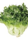 フリルアイス(うるおい野菜) 198円(税抜)