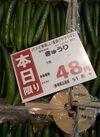 きゅうり 48円(税抜)