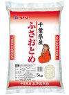 千葉ふさおとめ 1,680円(税抜)