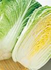 白菜 148円(税抜)
