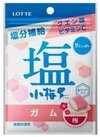 塩小梅ガム 58円(税抜)