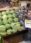 嬬恋村きゃべつ 178円(税抜)