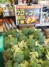 ブロッコリー 157円(税抜)