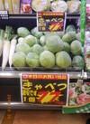 キャベツ 77円(税抜)