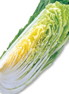 三ツ星野菜の白菜 58円(税抜)