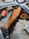 焼魚屋さんの銀鮭塩焼弁当 498円(税抜)