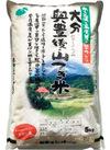 大分奥豊後 山つき米 ひのひかり 1,590円(税抜)