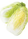 白菜(1/2カット) 195円(税込)