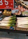 長ねぎ 85円(税抜)