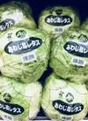 レタス 98円(税抜)
