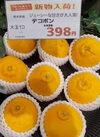 デコポン(大玉) 398円(税抜)