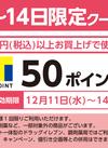 12/11~14限定クーポン!【T50ポイント】 50ポイントプレゼント