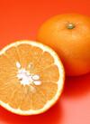 高糖度ネーブルオレンジ(カシューゴールド) 498円(税抜)