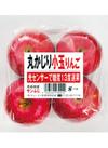 サンふじりんご(丸かじり小玉りんご) 480円(税抜)