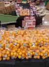 和歌山県産 有田みかん 298円(税抜)