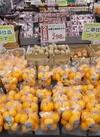 有田みかん 298円(税抜)