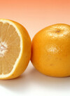 グレープフルーツ(ホワイト) 98円(税抜)