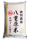ベイクック 特別栽培米八重原産コシヒカリ 5Kg 10%引