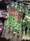 若ごぼう 198円(税抜)