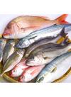 お魚各種 98円(税抜)