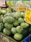 松波キャベツ 100円(税抜)