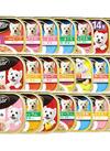 シーザー 100g 各種 598円(税抜)