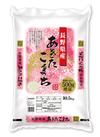 ベイクック 長野県産あきたこまち10kg 5%引