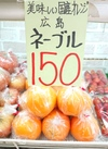 ネーブルオレンジ 150円