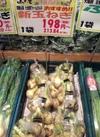 新玉ねぎ 198円(税抜)